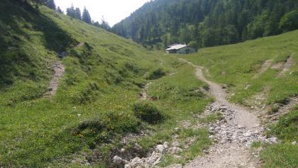 Kotalm-Hütte auf 1133 m.