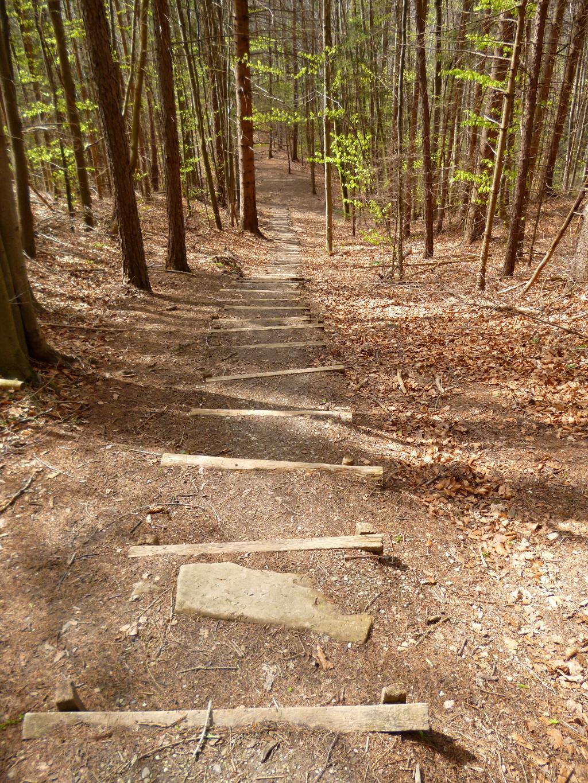 Später geht es über zahlreiche Stufen steil hinunter in Richtung Ammer. (Monika Heindl)