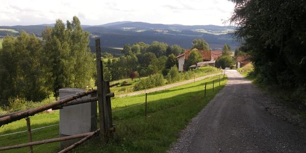 Beim ersten Anstieg der Tour genießen wir schon weite Ausblicke auf die Höhenzüge des Bayerischen Walds.