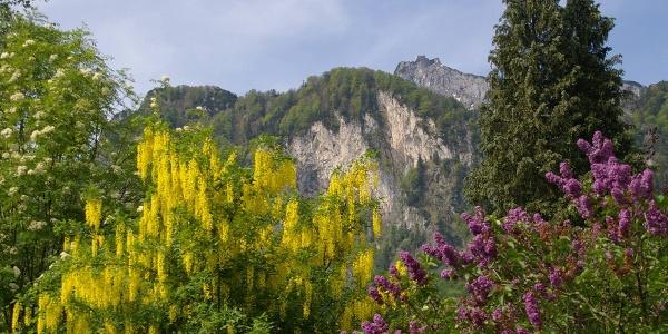 Berchtesgaden - Salzburg