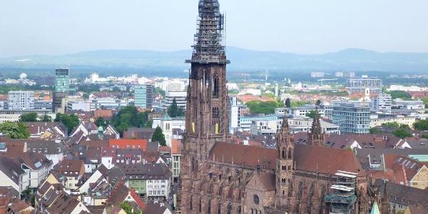 Blick vom Kanonenplatz auf Freiburg