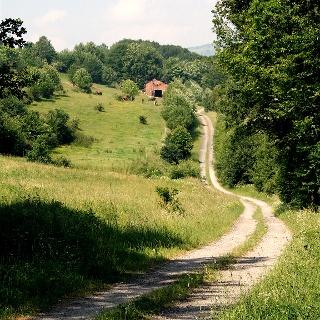 Hinter Bischofsheim verlassen wir die befahrenen Straßen und kommen durch herrliche Natur.