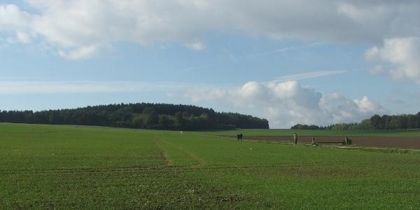 Breites Feld