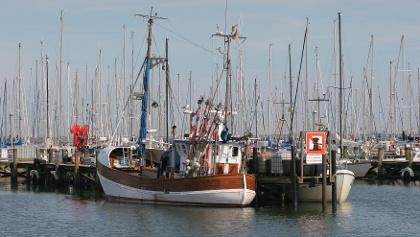 Fischkutter im Hafen von Maasholm.