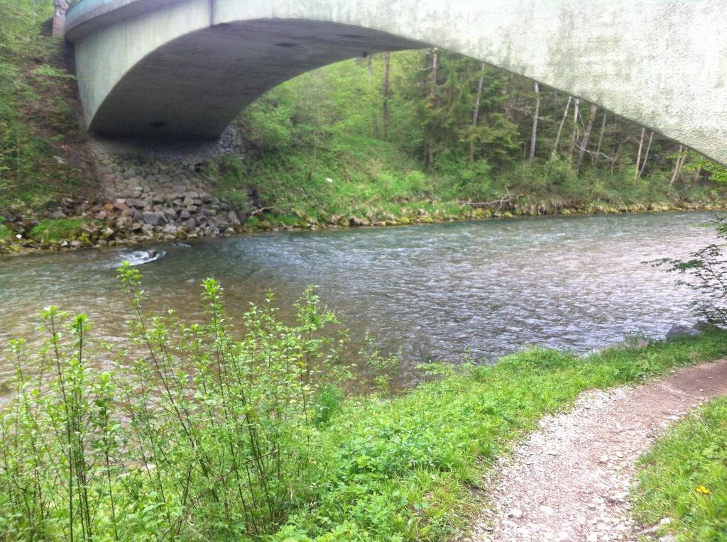Ammerbrücke südwestlich von Wörth. ()