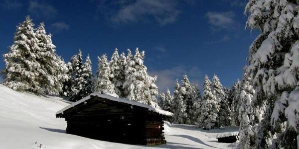 Winterlandschaft an der Nösslachhütte.