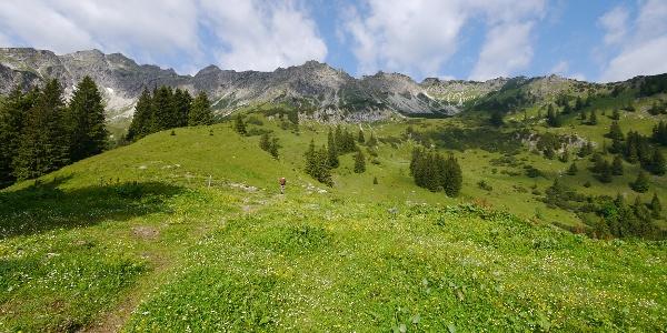 Breitenberg (1893 m) - Aufstieg