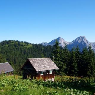 Teicheneggalm 1600 m