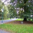 Der Fredenbaumpark in Dortmund.