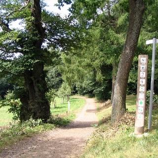 Tour ins Steinbachtal