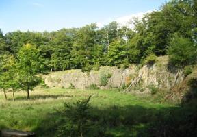 Ehemaliger Basaltsteinbruch im Naturschutzgebiet -Hoher Berg