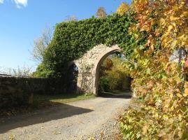 Auffahrt Burg Brandenstein
