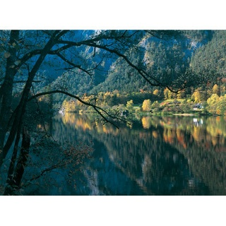 Wir wandern durch die schöne Landschaft am Thumssee.