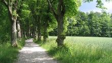 Route 8: König-Ludwig-Aktiv-Tour zum Spornritt und den Hügekgräbern bei Machtlfing