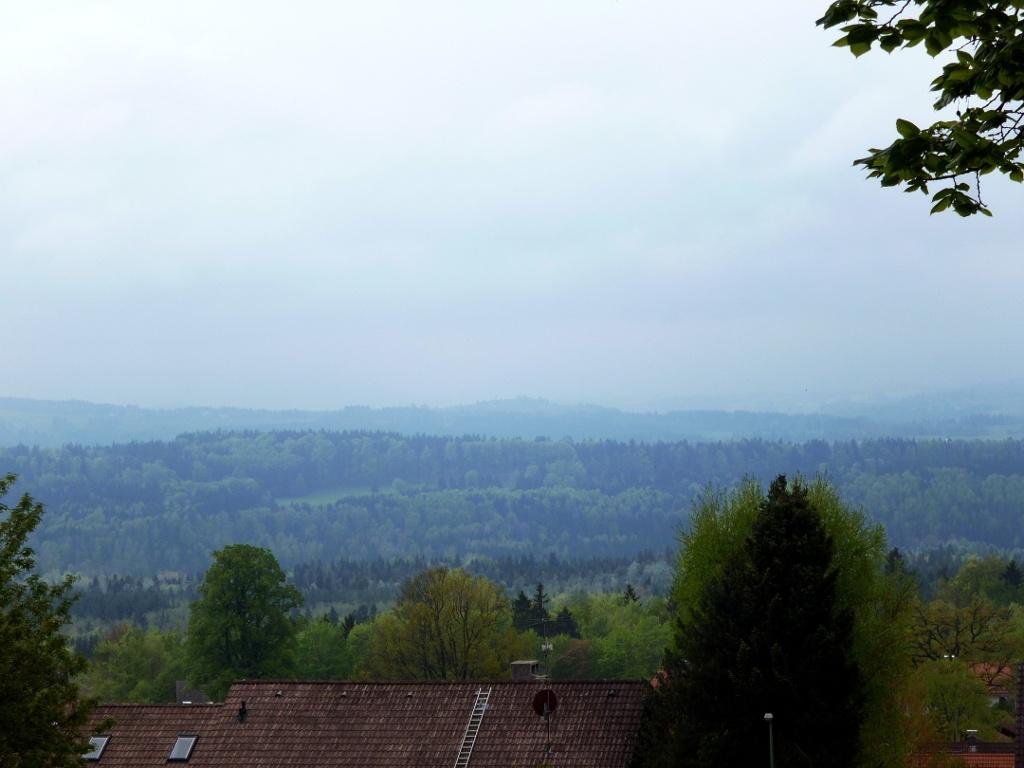 Bei klarer Sicht bietet sich oberhalb von Hohenpeißenberg ein herrlicher Blick über das Alpenvorland bis zu den Bergen. (Monika Heindl)