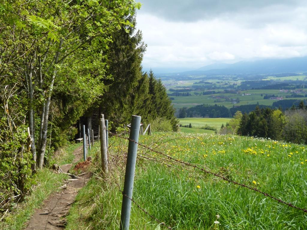 Im unteren Teil führt der Jägersteig panoramareich am Waldrand entlang. (Monika Heindl)