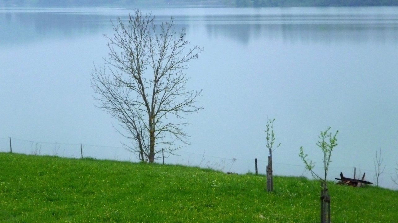 Traumhafter Blick über den Lechstausee nahe Urspring. (Monika Heindl)