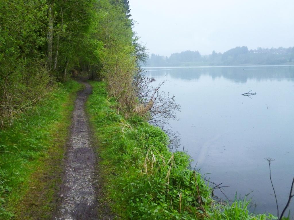 Direkt am Ufer des Lechstausees entlang führt der Weg idyllisch in Richtung Lechbruck. (Monika Heindl)