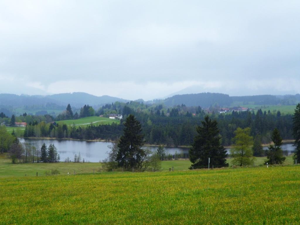 Blick auf den malerisch gelegenen Schwaigsee. (Monika Heindl)