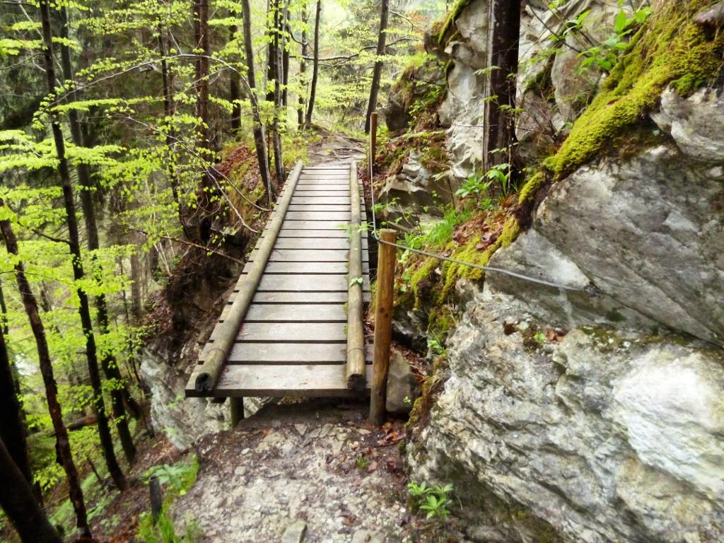 Auf dem schmalen Pfad durch die Ammerschlucht müssen zahlreiche schmale Stege überquert werden. (Monika Heindl)
