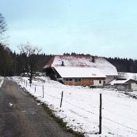 Der Simonshaldenweg.