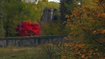 beim Kloster Arnsburg