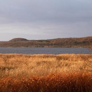 Auf der Seepromende bietet ein Aussichts- und Beobachtungspunkt herrliche Ausblicke auf den Schmachter See.