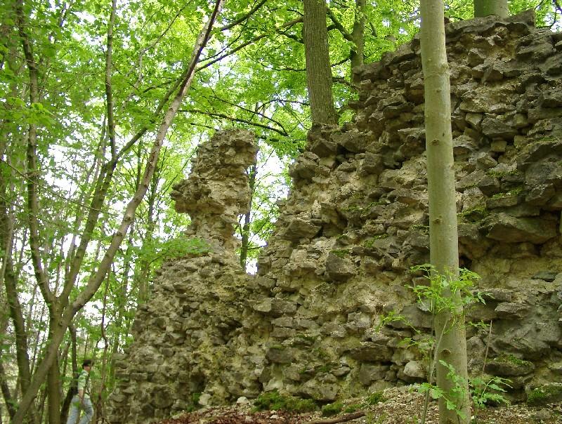 Burgruine Werdeck  - @ Autor: Heinz Obinger  - © Quelle: Hohenlohe + Schwäbisch Hall Tourismus e.V.