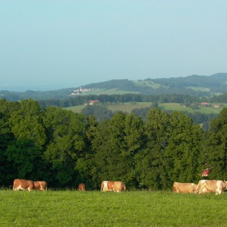 Blick von Stadlberg