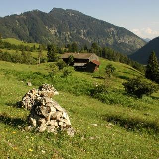 Von der Zeller-Alm sieht man auf die andere Talseite zum Seeberg und zum Kitzlahner hin.