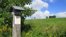Der Fickeltünnesweg - Wandern auf dem Geschichtswanderweg rund um Allendorf