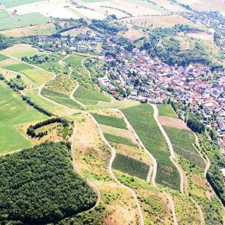 Blick auf Bockenau