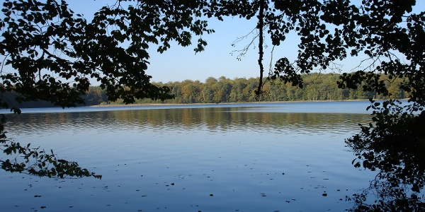 Der Stechlinsee ist der bedeutenste Klarwassersee der Norddeutschen Tiefebene.