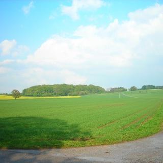 Blick über die Felder in der Nähe des Schopflocher Moors.