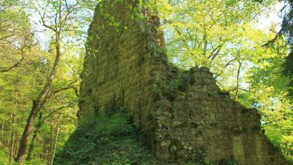 DonauWelle Kraftstein-Runde