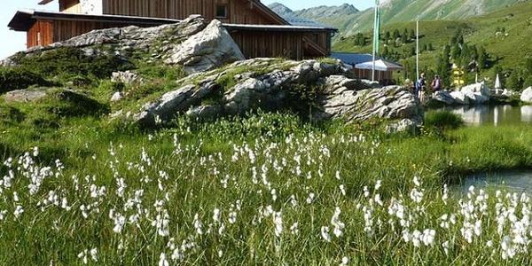 Lizumer Hütte 2019m, Foto: Gerald Aichner