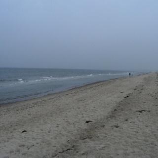 Dierhagener Strand.