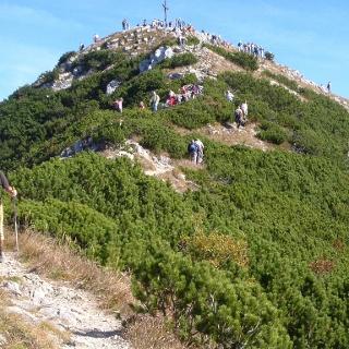 Der Gipfel der Brecherspitz von Süden aus