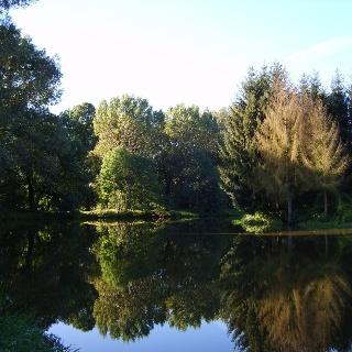 Perfekte Spiegelung im See.