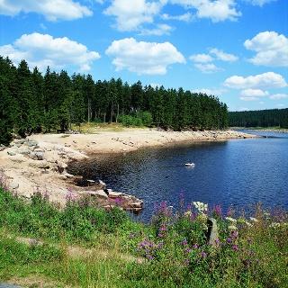 Im Sommer lädt der Oderteich zum Baden und Faulenzen in der Sonne ein.