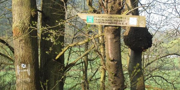 Wegmarkierung im Hahnenbachtal (April 2014)