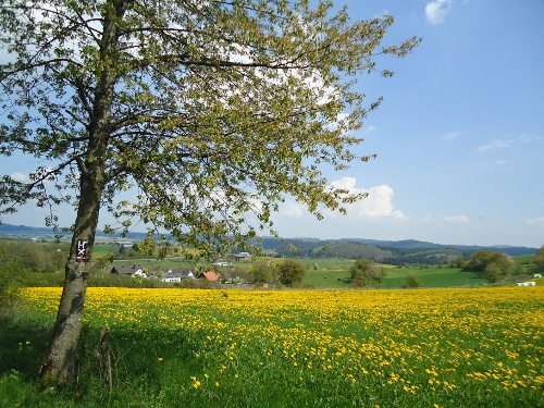 Orketalrundweg (Medebach: Medelon-Berge-Dreislar)