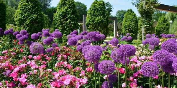 Gelände Garten Tulln