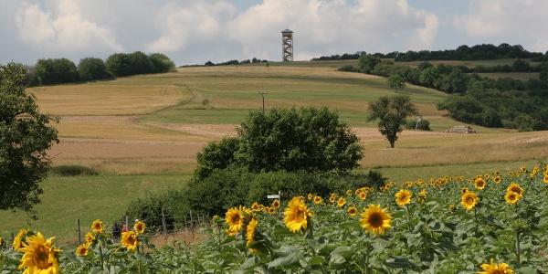 Der Turm auf dem Heimberg