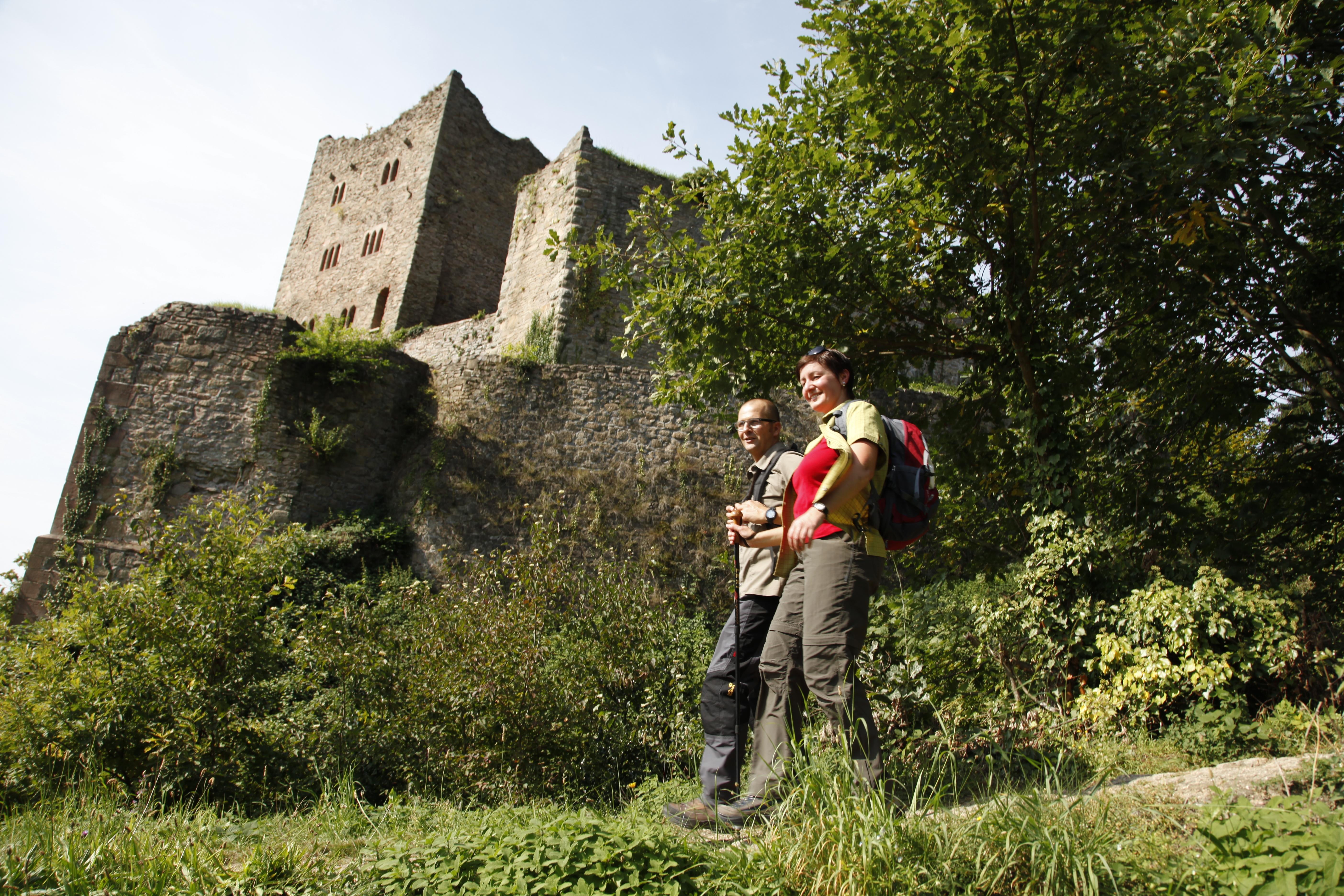 Castle Ruin Schauenburg