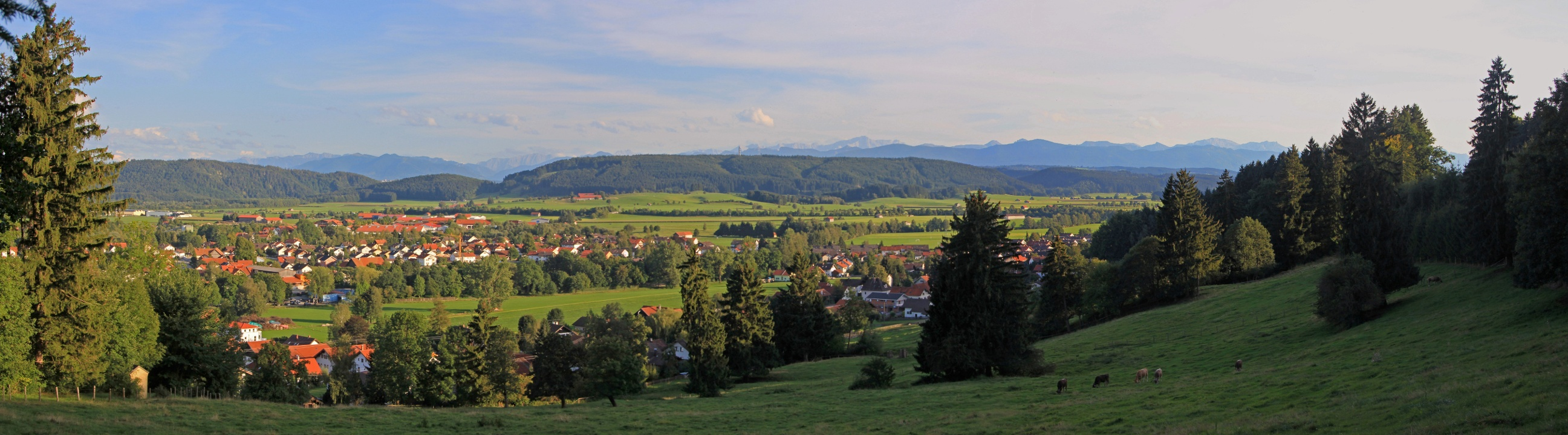 Panoramablick auf Peiting vom Klavarienberg aus (Tourist Information Peiting)