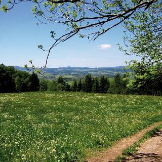 Wir wandern an Feldern und Wäldern entlang.