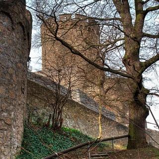 Das Schloss Alsbach im Odenwald.
