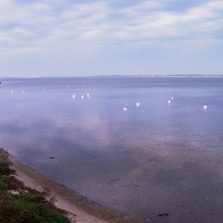Die Rinne des Strelasundes entstand durch eiszeitliche Schmelzwasserflüsse und bildet gegenwärtig eine Meerenge zwischen dem Festland und der Insel Rügen.