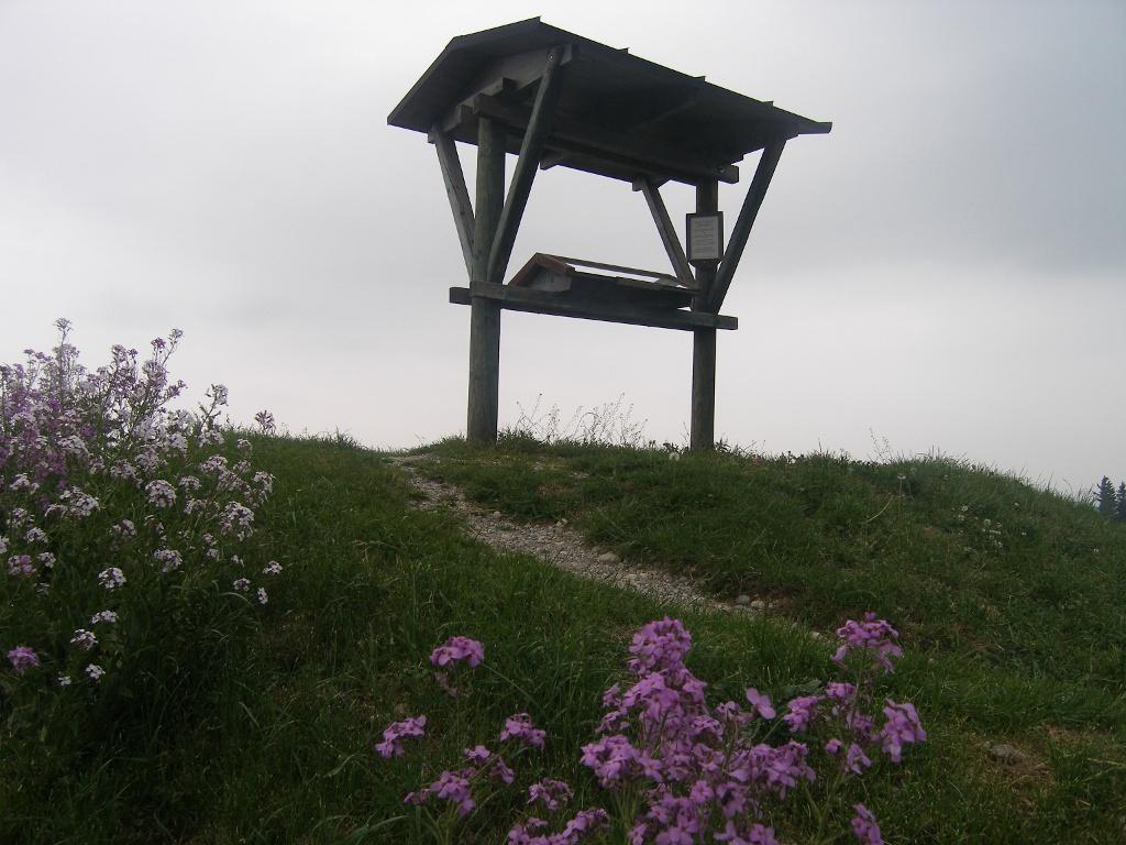 Am höchsten Punkt des Panoramawegs treffen wir auf eine Informationstafel.    - © Quelle: Outdooractive Redaktion